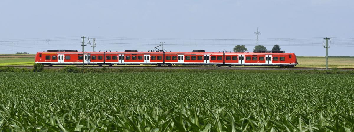 S-Bahn im Feld © VRN/DB - Thomas Henne